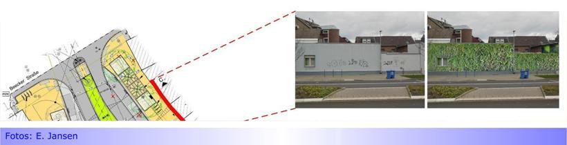 """""""Wände am ZOB Hilderather Straße ansehnlicher und ökologischer gestalten"""" • Bezirksvertreter Erik Jansen (DIE LINKE) zeigt wie"""