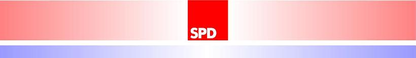 Neuer SPD-Fraktionsvorstand komplett